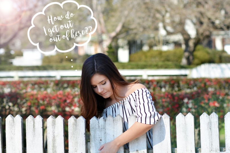 fence pic.jpg